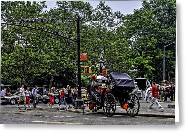 They Come To Central Park Greeting Card by Madeline Ellis