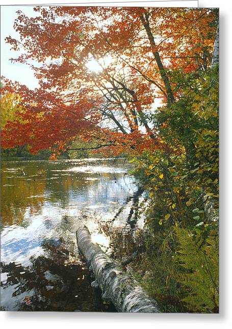 Thompson Landing Greeting Card