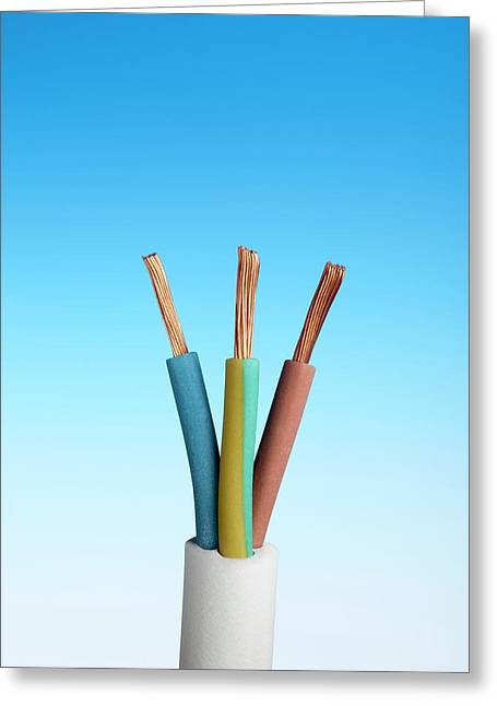 Three-core Electrical Cable Greeting Card by Science Photo Library