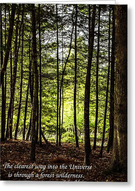 Thru The Trees With John Muir Quote Greeting Card