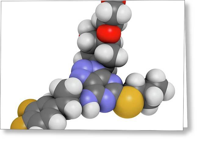 Ticagrelor Platelet Inhibitor Drug Greeting Card by Molekuul