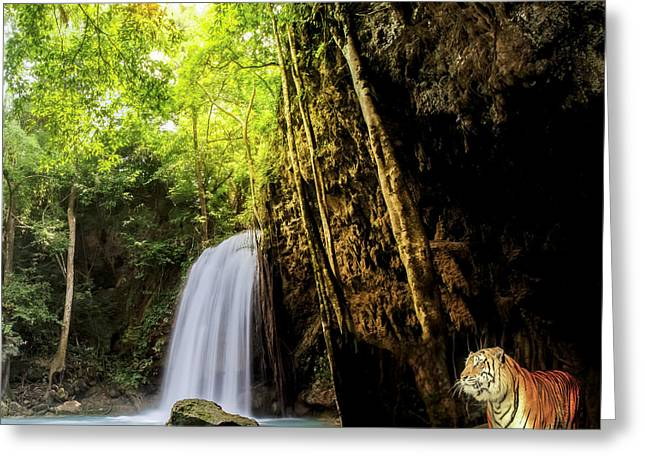 Tiger In The Jungle Greeting Card by Anek Suwannaphoom