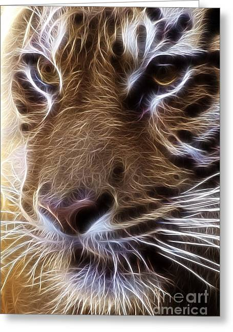 Tiger  Greeting Card by Tilly Williams