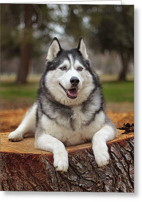 Timber  Greeting Card