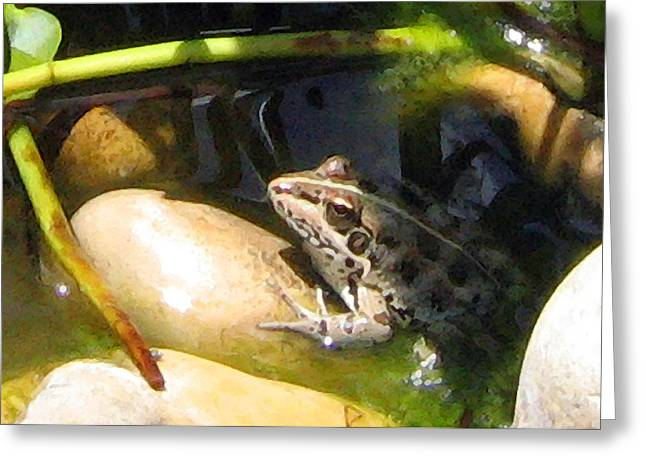 Greeting Card featuring the digital art Toad by Helene U Taylor