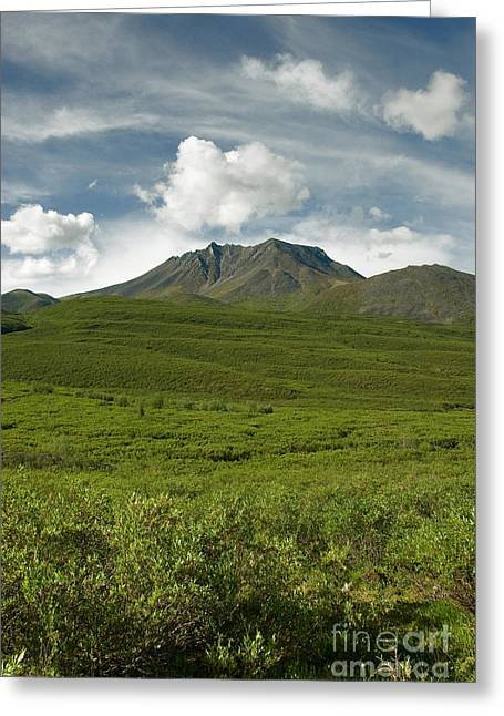 Tombstone Provincial Park Greeting Card