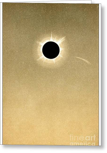 Total Solar Eclipse Of 1882 And Comet Greeting Card by Detlev van Ravenswaay