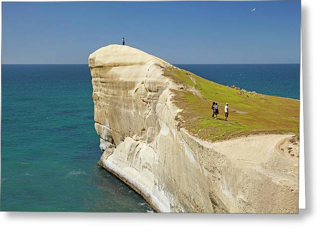 Tourists On Cliff Top At Tunnel Beach Greeting Card by David Wall