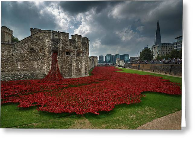 Tower Of London Poppies Greeting Card by Izzy Standbridge