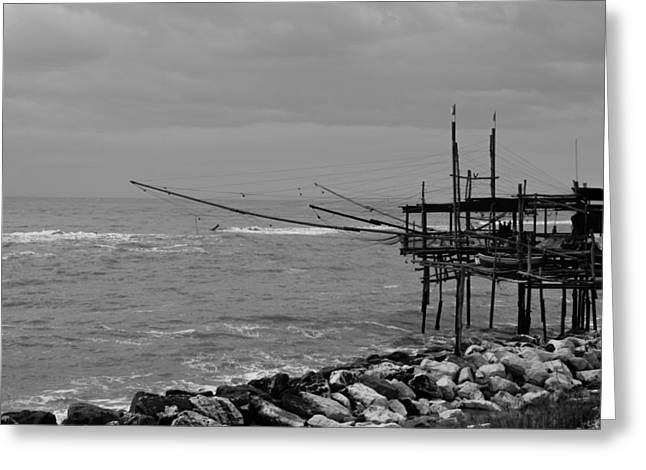 Trabocco On The Coast Of Italy  Greeting Card by Andrea Mazzocchetti