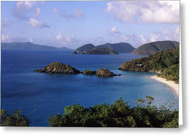 Trees On The Coast, Trunk Bay, Virgin Greeting Card by Panoramic Images