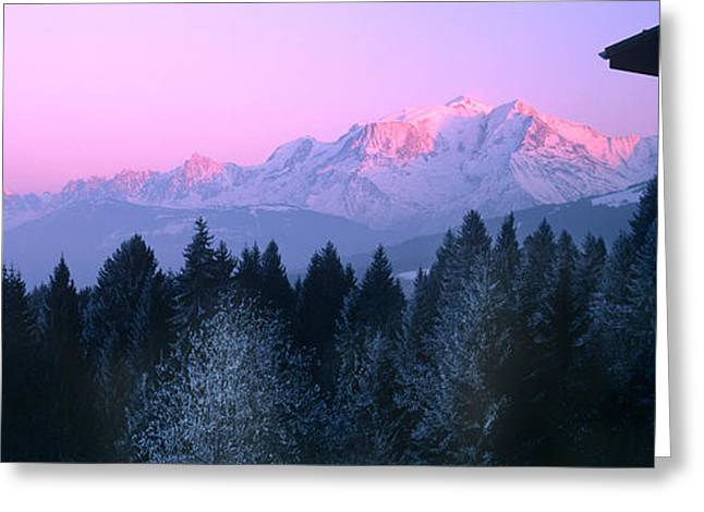 Trees With Snow Covered Mountains Greeting Card
