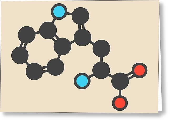 Tryptophan Amino Acid Molecule Greeting Card by Molekuul