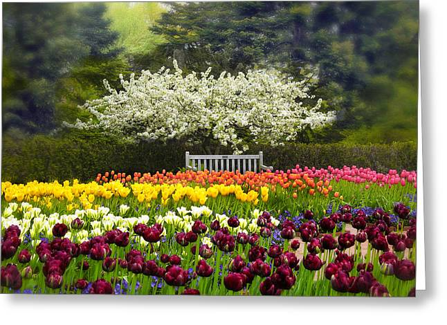 Tulip Garden Greeting Card by Jessica Jenney