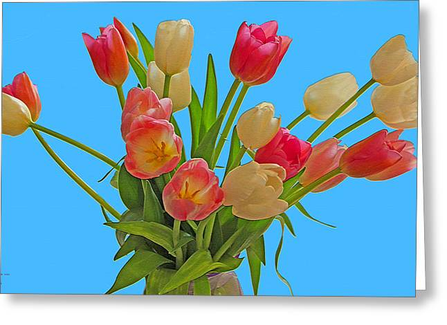 Tulips  Just  For  You Greeting Card