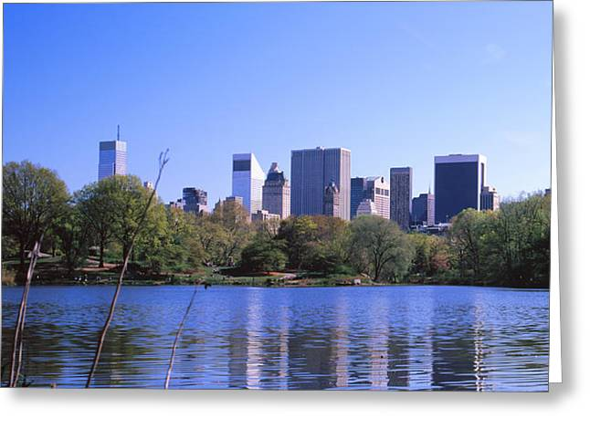 Turtles In The Lake, Central Park Greeting Card by Panoramic Images