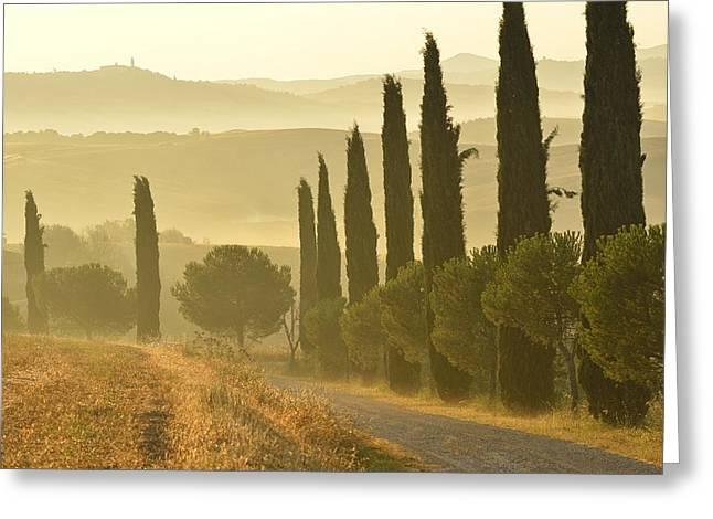 Tuscany Greeting Card by Christian Heeb