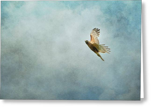 Up Up And Away Greeting Card by Jai Johnson
