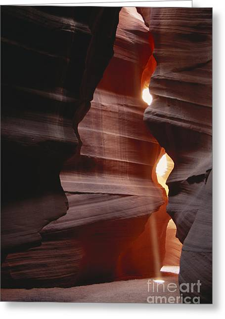 Water Worn Sandstone Greeting Cards - Upper Antelope Canyon, Arizona Greeting Card by Mark Newman