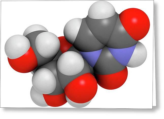 Uridine Nucleoside Molecule Greeting Card by Molekuul
