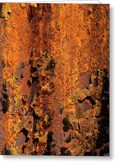 Usa, Arizona, Tucson, Texture Greeting Card by Peter Hawkins