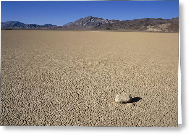 Usa, California, Death Valley, Stone Greeting Card by Tips Images