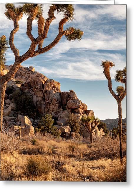 Usa, California, Joshua Tree National Greeting Card by Ann Collins