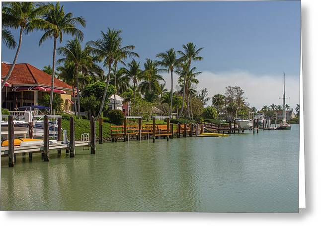 Usa, Florida, Naples Greeting Card by Charles Crust