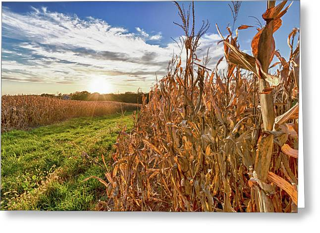Usa, Nebraska, Near Omaha Greeting Card by Christopher Reed