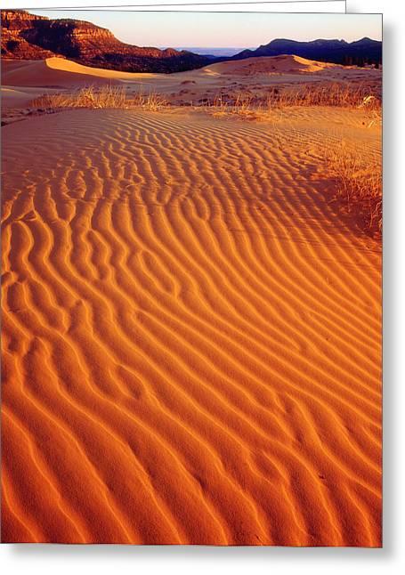 Usa, Utah Coral Pink Sand Dunes Greeting Card