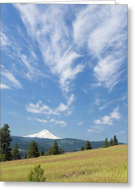 Usa, Washington State, Columbia River Greeting Card by Jaynes Gallery