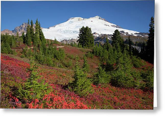 Usa, Washington State, Mount Baker Greeting Card by Jamie and Judy Wild