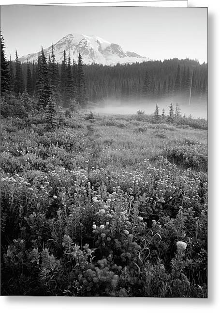 Usa, Washington State, Mt Rainier Greeting Card