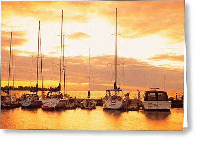 Golden Egg Greeting Cards - Usa, Wisconsin, Door County, Egg Greeting Card by Panoramic Images