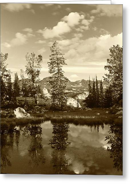 Usa, Wyoming, Landscape With Reflection Greeting Card by Scott T. Smith