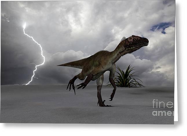 Utahraptor Running Across A Desert Greeting Card