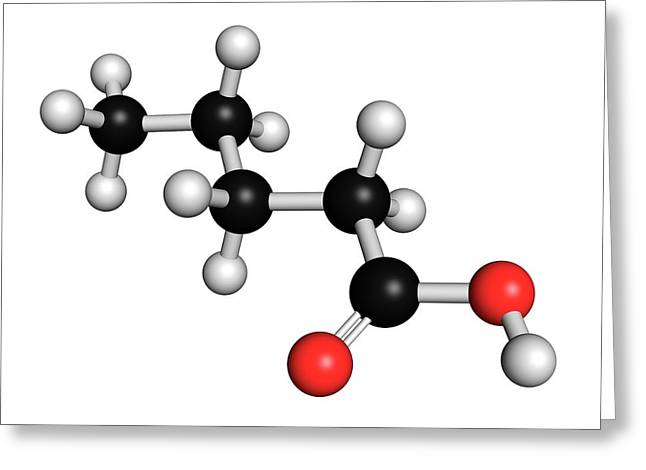 Valeric Acid Molecule Greeting Card