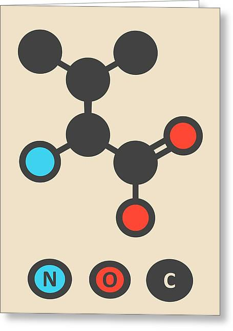 Valine Amino Acid Molecule Greeting Card by Molekuul