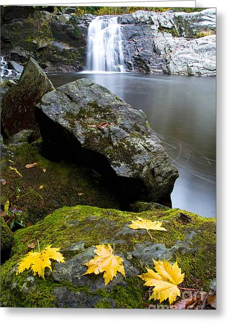 Vermont Waterfall Greeting Card