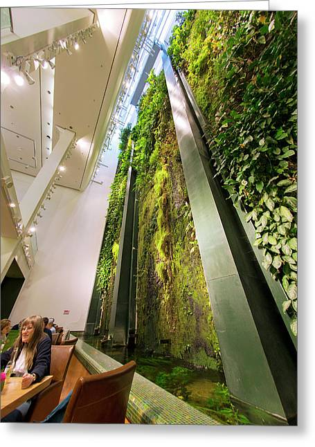 Vertical Garden Greeting Card by Louise Murray