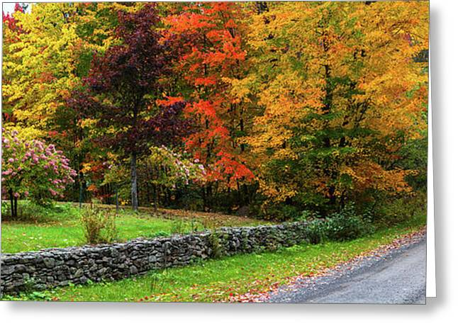 View Of Dirt Road In Autumn, Sutton Greeting Card