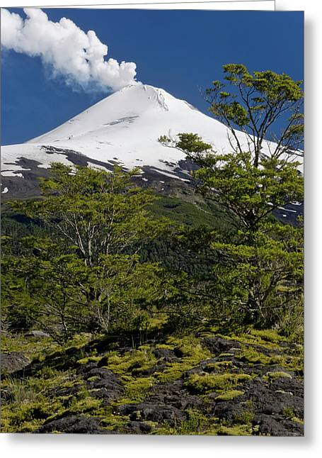 Villarrica National Park, Chile Greeting Card