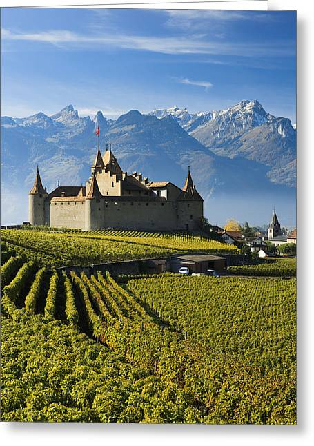 Vineyards And Castle Aigle, Switzerland Greeting Card