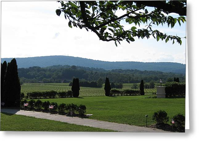 Vineyards In Va - 12123 Greeting Card by DC Photographer