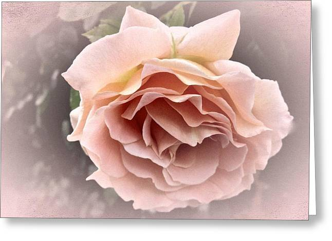Vintage Rose No. 3 Greeting Card by Richard Cummings