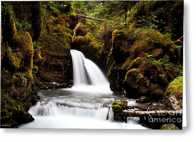 Virgin Creek Falls Greeting Card by Chris Heitstuman