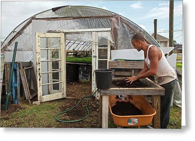 Volunteer At An Urban Farm Greeting Card by Jim West