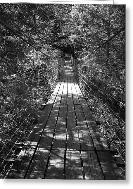 Walk Through Woods Greeting Card