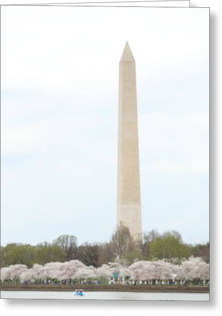 Washington Monument - Cherry Blossoms - Washington Dc - 011310 Greeting Card by DC Photographer