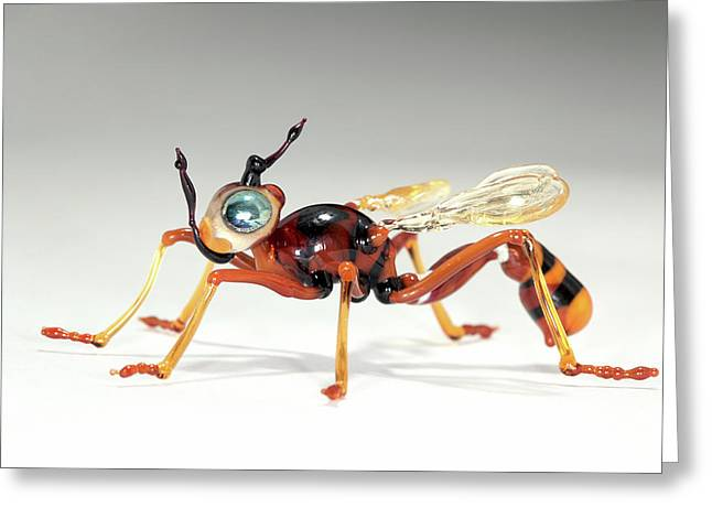 Wasp Greeting Card by Tomasz Litwin